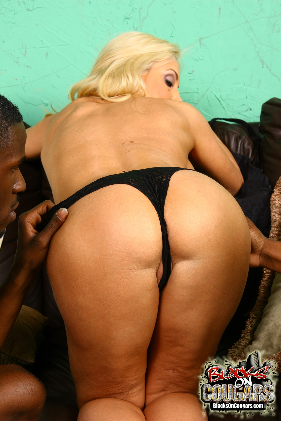 Dogfart '- Blacks On Cougars' starring Cala Craves (Photo 18)