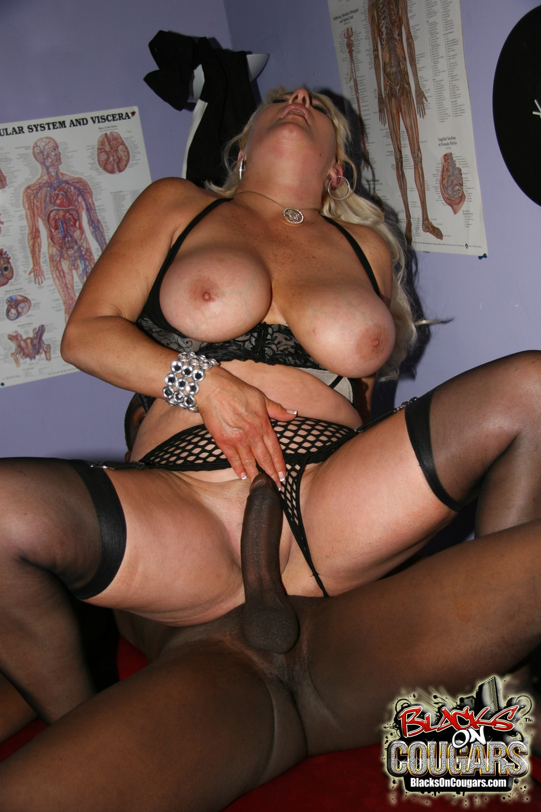 Dogfart '- Blacks On Cougars' starring Dana Hayes (Photo 28)