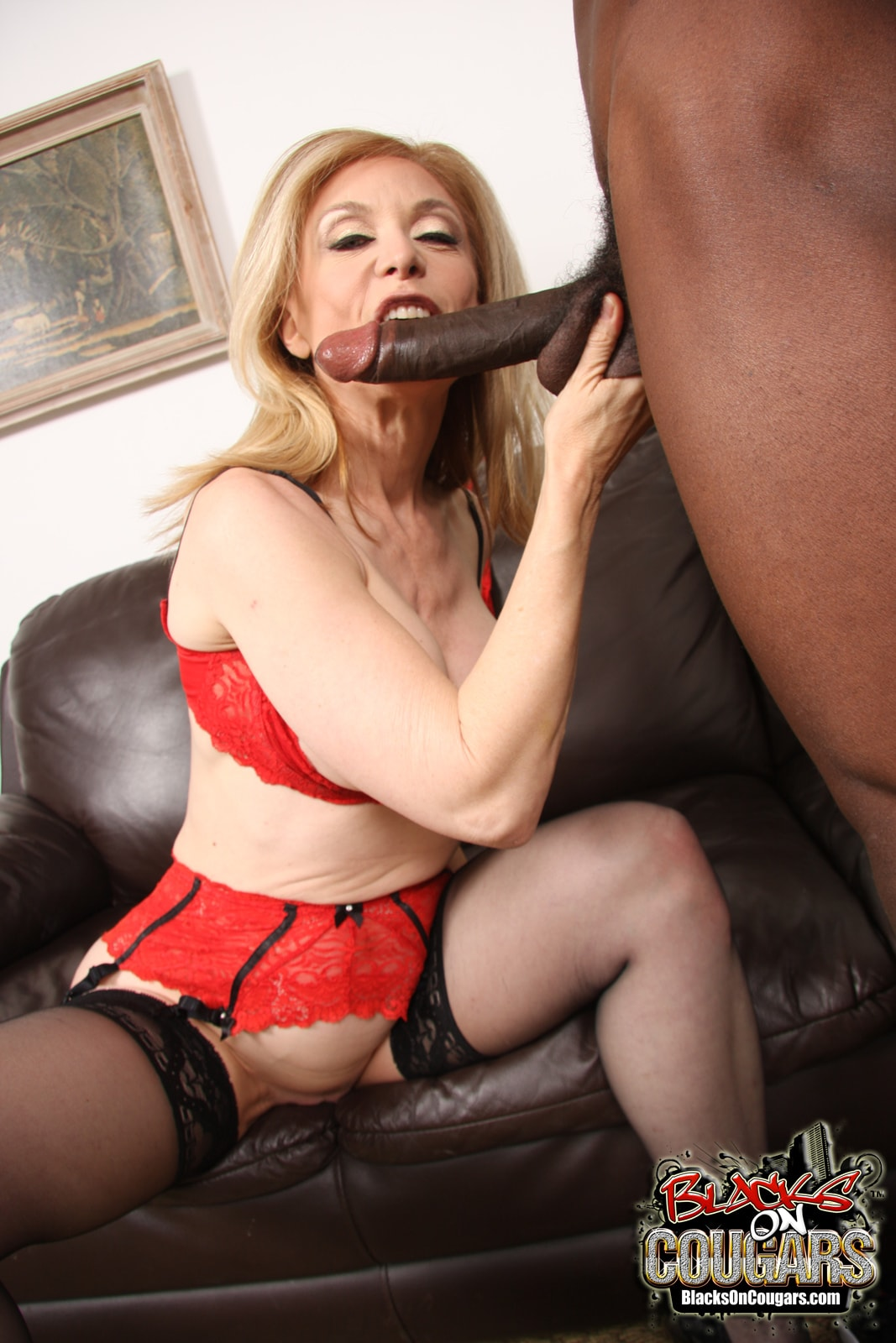 Dogfart '- Blacks On Cougars' starring Nina Hartley (Photo 17)