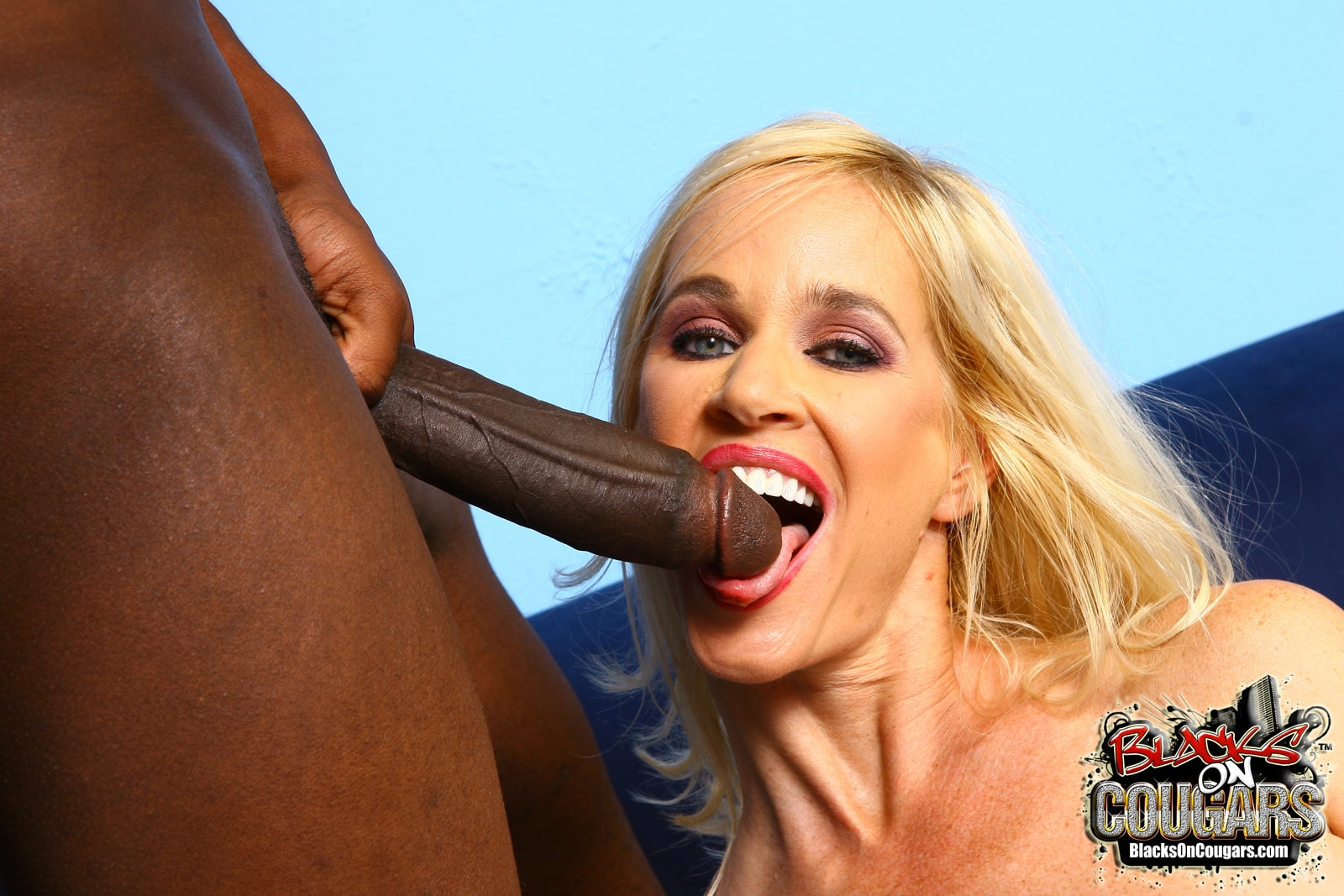 Dogfart '- Blacks On Cougars' starring Tabitha (Photo 28)