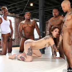 Vanessa Vega in 'Dogfart' - Blacks On Blondes - Scene 3 (Thumbnail 7)