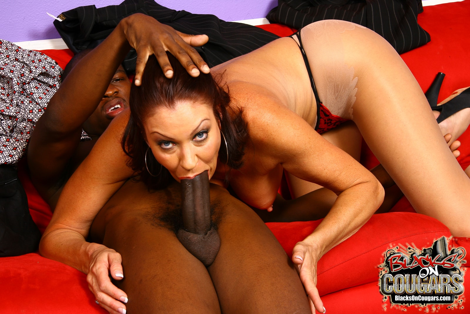 Dogfart '- Blacks On Cougars' starring Vanessa Videl (Photo 17)